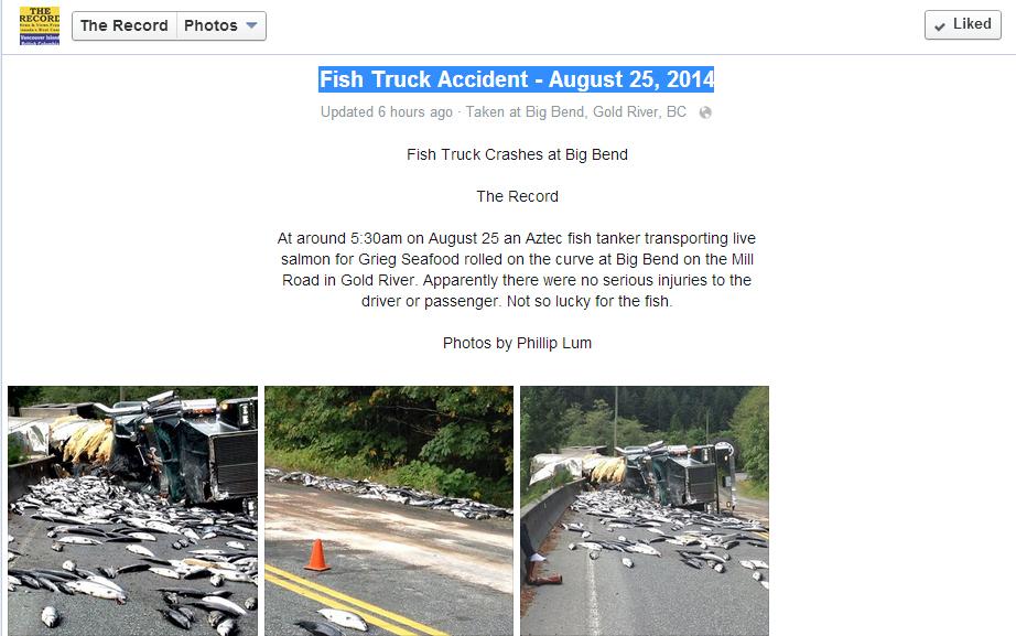 Record Peshku Kamion Screenshot
