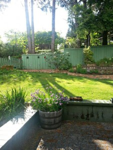 Gold River House for Sale Backyard Spring 2
