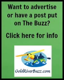 Buzz post sidebar