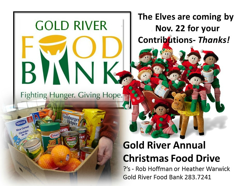 Food Bank Christmas Food Drive 2015