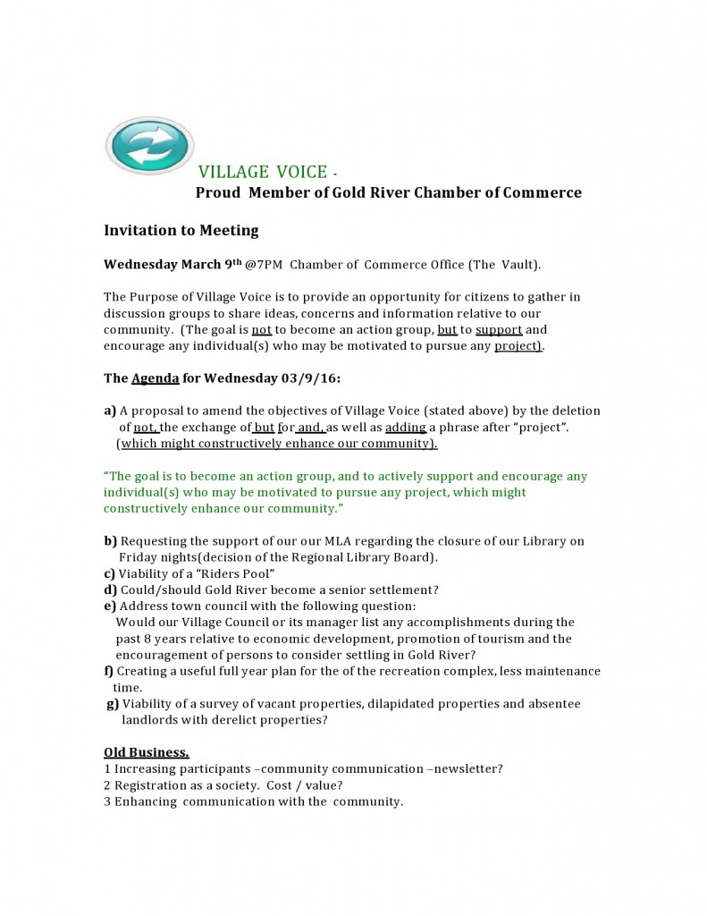 Viilage Voice Invitation to MARCH Meeting